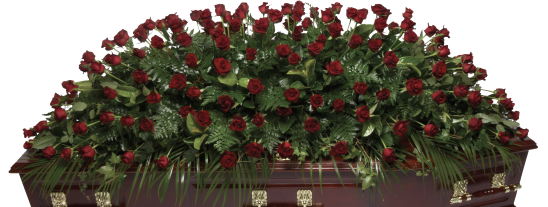 Rdeluxe Double Ended Full Length Red Roses
