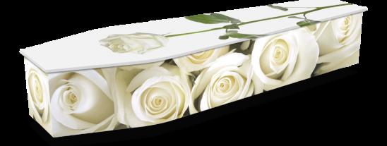 WHITE ROSES w DROPSHADOWS 1024x536